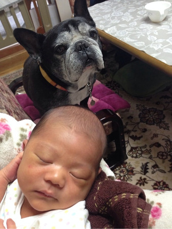 Attachment00_2